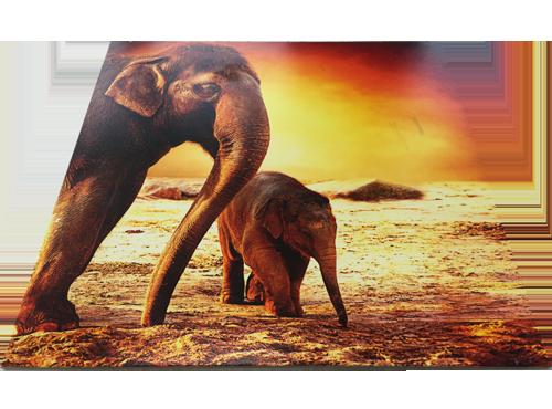 Impresión en vidrio de 2 elefantes en el desierto con colores cálidos